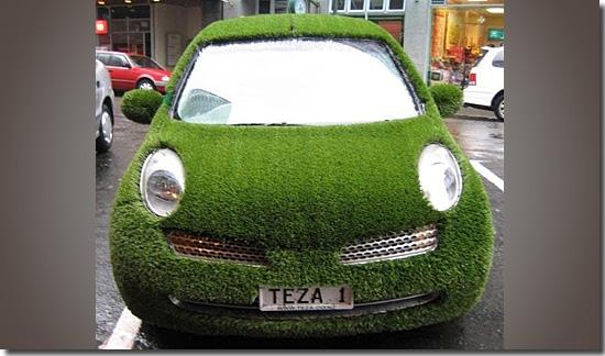 carros-mais-estranhos-do-mundo-carro-gramado